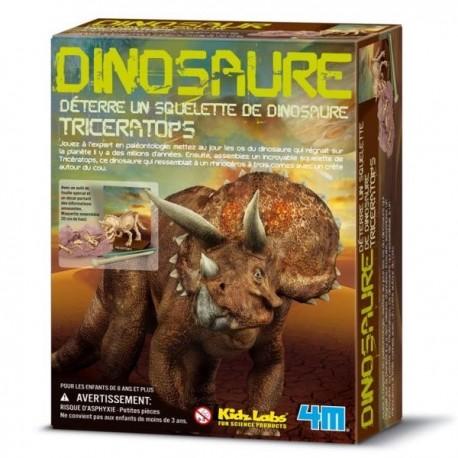Kit de construction dinosaure Deterre ton dinosaure Triceratops garçons 8 ans +