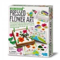 Presse à fleurs pour herbier 4M