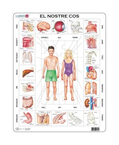 Puzzle éducatif Apprendre Le corps humain en CATALAN 35 pièces Larsen